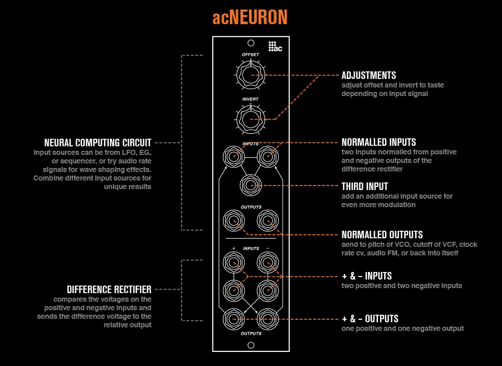 acNeuron description